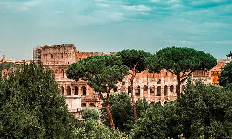 Rome Guided Walking Tour with Colosseum, Roman Forum &  Palatin Hill