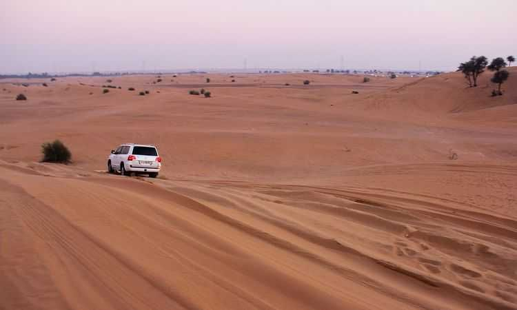 4x4 Desert Safari with BBQ dinner