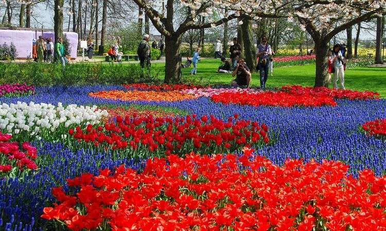 Keukenhof Skip the Line ticket
